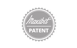 Maxibit Patent for displays